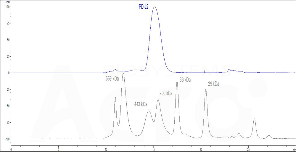 Human PD-L2, Fc Tag (HPLC-verified) (Cat. No. PD2-H5251) HPLC images