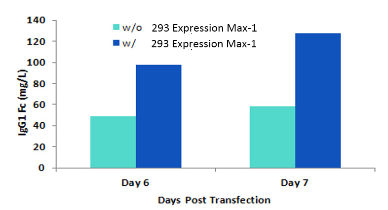 293 Expression MAXTM-1 Example